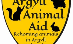 2015 AAA New Logo online