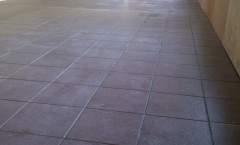 cattery tiled floor-s